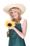 Gardener swith sunflower Royalty Free Stock Photos