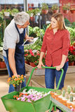 Gardener with tablet PC helping customer stock images