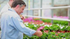 Gardener talking to a customer Stock Photos