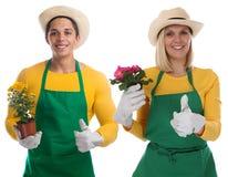 Gardener team gardner flower gardening garden occupation thumbs Royalty Free Stock Image