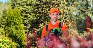Gardener Trimming Plants royalty free stock image