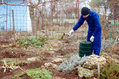 Gardener unwrapping metallic wire mesh Royalty Free Stock Image