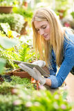 Gardener using digital tablet while working. Young female gardener using digital tablet while working at greenhouse Stock Photo