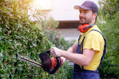 Gardener using an hedge clipper in the garden Royalty Free Stock Image