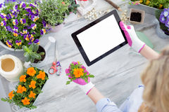 Gardener using tablet to learn new techniques Stock Photos