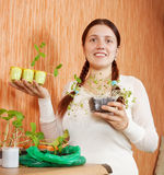 Gardener with various seedlings Royalty Free Stock Photography