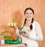 Gardener with various seedlings Stock Image