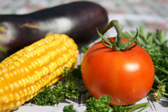 Gardener vegetables. Sunflower,egg-plant, corn tomato and parsley Stock Photos