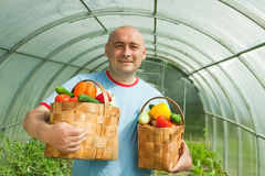 Gardener with vegetables harvest Stock Image