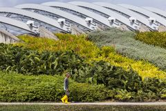 Gardener walking along flowerbeds with the Flower Dome in the background stock photos