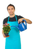 Gardener watering Stock Photography