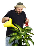 Gardener watering big yellow green flower. With watering can Stock Photo