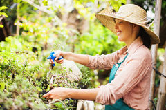 Gardener with watering can Stock Photo