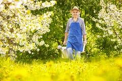 Gardener watering can spade cherry tree meadow Royalty Free Stock Photos