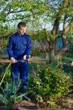 Gardener watering flowers in the garden Stock Photo