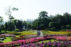 The gardener is watering the flowers at the park at Long 9 Park. Bangkok Thailand The beautiful flower garden. Public park at Suan luang Rama 9, Asia royalty free stock images