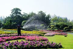 The gardener is watering the flowers at the park at Long 9 Park. Bangkok Thailand The beautiful flower garden. Public park at Suan luang Rama 9, Asia royalty free stock photo