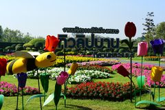 The gardener is watering the flowers at the park at Long 9 Park. Bangkok Thailand The beautiful flower garden. Public park at Suan luang Rama 9, Asia royalty free stock photography