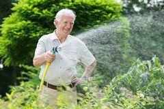 Gardener watering the plants Royalty Free Stock Images