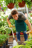 Gardener watering plants with water hose. In a nursery shop stock photos