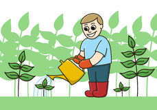 A Gardener Watering Plants With A Watering Can Stock Image