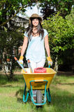Gardener with Wheelbarrow Royalty Free Stock Photo