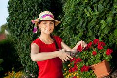 Gardener woman Stock Images