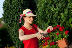 Gardener woman Royalty Free Stock Photography