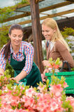 Gardener woman advising customer buying plants Royalty Free Stock Images