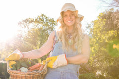 Gardener woman holding a basket of vegetables Royalty Free Stock Photography