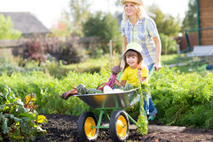Gardener woman pushing wheelbarrow with kid Royalty Free Stock Photography