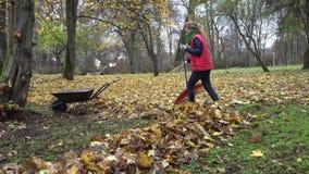 Gardener woman raking leaves in backyard. Empty rusty barrow cart. 4K stock footage