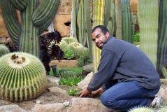 Gardener at work Stock Images