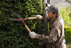 Gardener during work Stock Photography