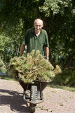 Gardener by the work Stock Photo