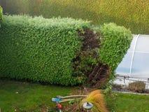 Gardener at work Royalty Free Stock Image