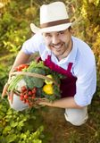 Gardener Royalty Free Stock Image