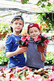 Gardeners. Two brothers as a gardeners - kids and family royalty free stock photos