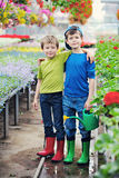 Gardeners. Two brothers as a gardeners - kids and family stock images