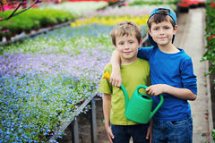 Gardeners. Two brothers as a gardeners - kids and family stock photography