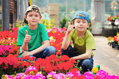 Gardeners. Two brothers as a gardeners - kids and family royalty free stock photography