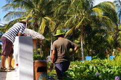 Gardeners 3. Gardener workers in tropical setting Royalty Free Stock Photo