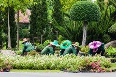 The Gardeners Royalty Free Stock Photos