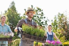 Gardeners carrying flower pots in crates at garden Stock Image