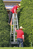 Gardeners in china. Two gardeners working on topiary in a garden at sun yat-zen memorial hall garden located at guangzhou, china Stock Photos