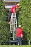 Gardeners in china Stock Photos