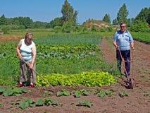 Gardeners couple Royalty Free Stock Photo