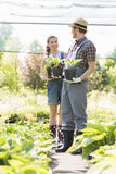 Gardeners discussing while holding potted plants at garden Stock Photo
