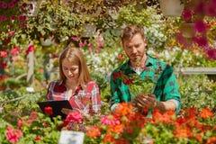 Gardeners doing paperwork Stock Images