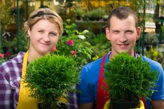 Gardeners holding green plants in pots. Gardeners holding green  plants  in pots Royalty Free Stock Photo